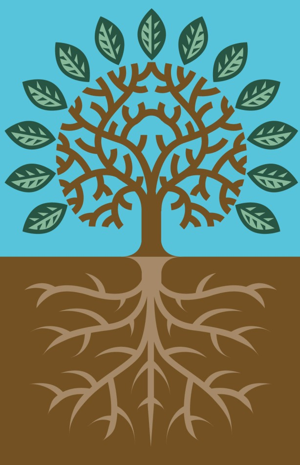 tree-and-roots1